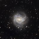 M83 Galaxy,                                Juan Filas