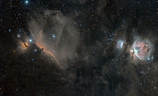 Orion Widefield,                                Matthias Steiner