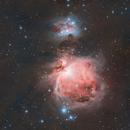 Orion Nebula,                                Michael Völker