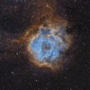 Rosette Nebula SHO - Caldwell 49,                                Lightstram