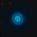 NGC 1535 - Cleopatra's Eye,                                Miles Zhou
