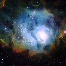 M8 Lagoon nebula,                                Hornisse