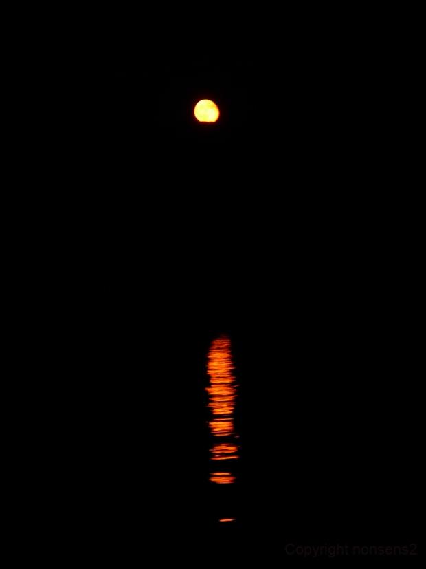 Moon mirroring on the sea,                                nonsens2
