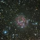 IC 5146 - The Cocoon Nebula ,                                Steve Rosenow
