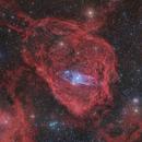The Squid and the Flying Bat Nebulae   Ou4 and Sh2-129,                                Kiko Fairbairn