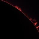 Sun, prominences, 1 Aprile 2020,                                Ennio Rainaldi