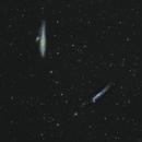 NGC4631 - Whale Galaxy & Hockey Stick,                                Elvie1