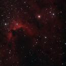 Caldwell 9 The Cave Nebula,                                Elmiko