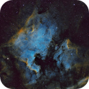 North America Nebula (NGC 7000) and Pelican Nebula (IC 5070),                                Luca Marinelli