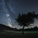 Milky Way Black Forest,                                Sebastian Voltmer