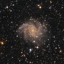 The Fireworks Galaxy (NGC 6946),                                Marcel Nowaczyk