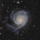 M101,                                Jürgen Eggenberger