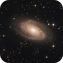 Messier 81 - Bodes Galaxy,                                Marcel Nowaczyk