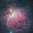 First Mono Image- M42 Orion Nebula,                                Rex Robichaux