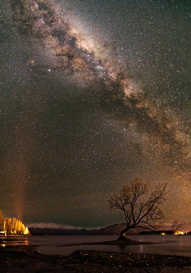 That Wanaka Tree,                                Matt Balkham