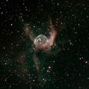 NGC 2359 Thor's Helmet Ha OIII,                                Davide Benghi