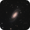 NGC 2903 - The Missing Messier,                                Jim Morse