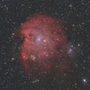 NGC 2174 - The Monkey Head Nebula,                                tgigl