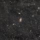 M81 / M82 Widefield,                                Alexander Voigt