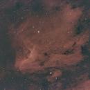 Pelican Nebular,                                Sebastian Dittmann