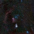 Orion Constellation,                                Vencislav Krumov
