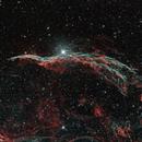 NGC 6960,                                Michael Hedenus