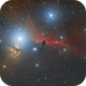 Horse head nebula,                                Ulli_K