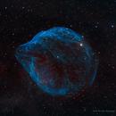 Dolphin Head Nebula (SH2-308) HOO + RGB stars,                                Jian Yuan Peng