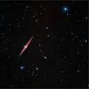 NGC 4565, The Needle Galaxy,                                Randal Healey