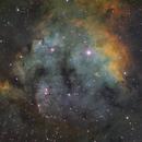 NGC7822 in Hubble Palette SHO,                                Benjamin Law