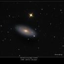 NGC2841 in Ursa Major 3/30/2016,                                rigel123