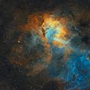 Sh2-132 Lion Nebula,                                Monkeybird747