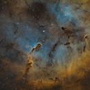 Elephant's Trunk Nebula,                                Richard Boyd
