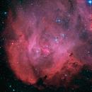 C100 Running Chicken Nebula,                                James Baguley