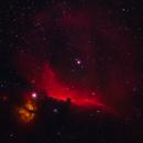 Horsehead and Flame nebula.,                                Kapil K.