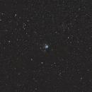 NGC7129,                                Michael Schulze