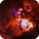 Fish Head   -  IC1795,                                Lars Stephan