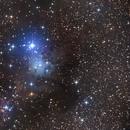NGC2264,                                Francois Tasse
