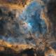 Heart Nebula Bicolor,                                Alessio Pariani