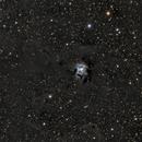 NGC7023 Iris nebula LRGB testing,                                Paddy Gilliland