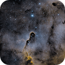 IC1396,                                Jonathan Young