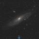 Andromeda. First light through TS-Optics 80mm,                                Nikolay Vdovin