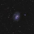 NGC 4395 (2021),                                Kurt Zeppetello