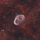 Crescent Nebula,                                Nicholas Bradley
