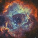Rosette Nebula H/O bicolor,                                raguramm