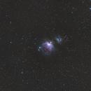 M42,                                Douche