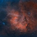 Sh2-132 Lion Nebula,                                Kathy Walker