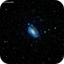 ngc2403 galassia in camelopardo                                 distanza  11 milioni  A.L.,                                Carlo Colombo