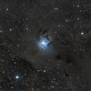 The Iris nebula,                                TheSkywatcher