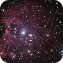 NGC 2174 monkey Head Nebula,                                Guillaume Cullet